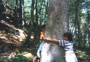 Il Percorso della Biodiversità